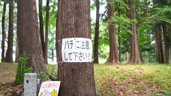 DSC_0012_R.JPG